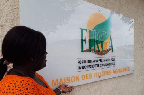 Article : Le Firca s'engage à numériser des services agricoles en Côte d'Ivoire